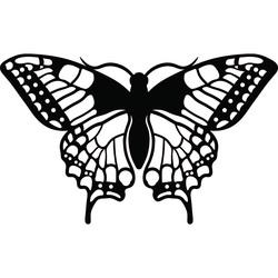 Nocny motyl wyrzeźbiony ze sklejki drewnianej L 420X 257 mm LEOPARTID